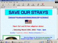 save our strays non profit web design companies